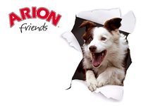 Pienso Arion friends