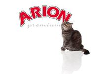 Alimentación Arion Premium