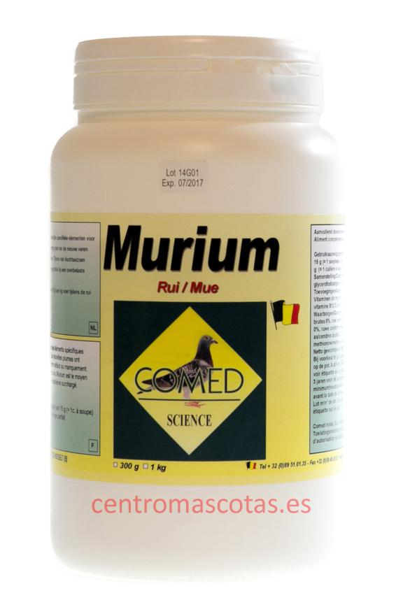 Murium muda comed