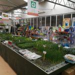 Plantel a domicilio Agrocentro Cantabria