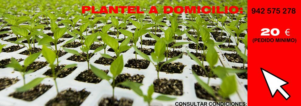 slider_PLANTEL_agrocentro_FONDO-ROJO